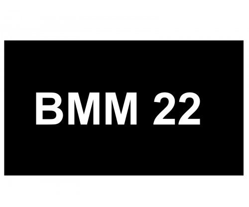 [VIP Number] - BMM 22