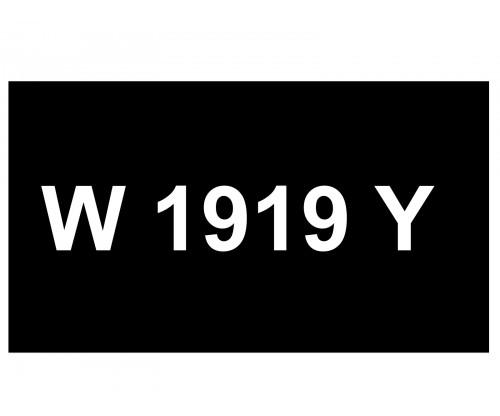 [VIP Number] - W 1919 Y