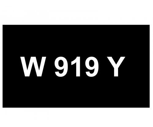 [VIP Number] - W 919 Y
