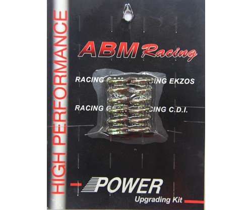 ABM - LC135 Clutch Spring