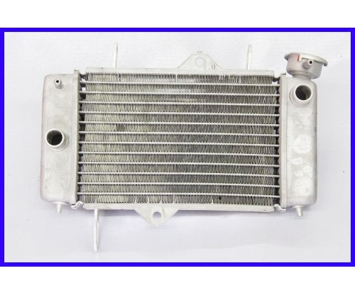 FZ150 - Radiator (HLY)