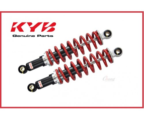 RXZ - Adjustable Absorber (KYB)