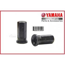 RXZ - Cylinder Head Nut (HLY)