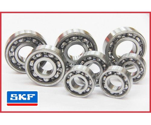 RXZ - SKF C3 Engine Bearing