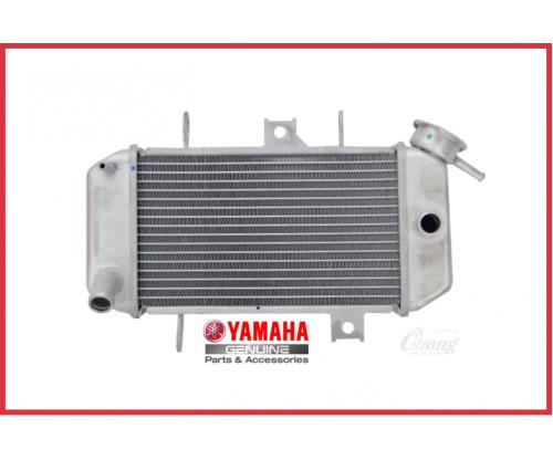 Y15ZR - Radiator Assy (HLY)